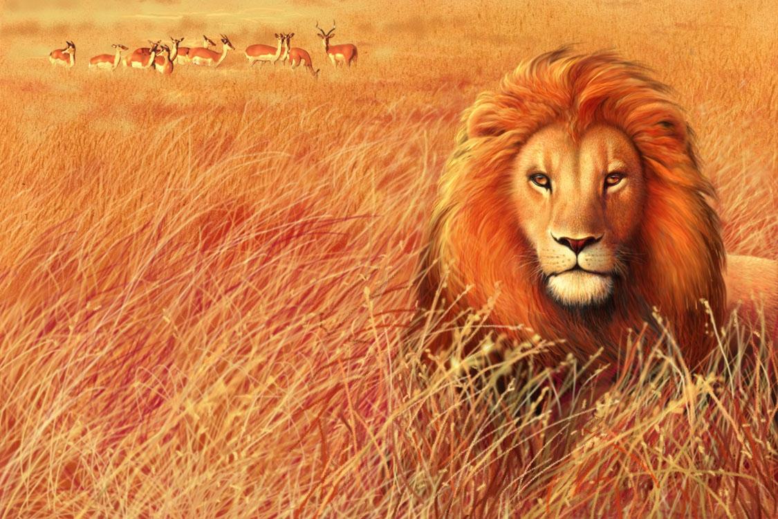 CPC.lion