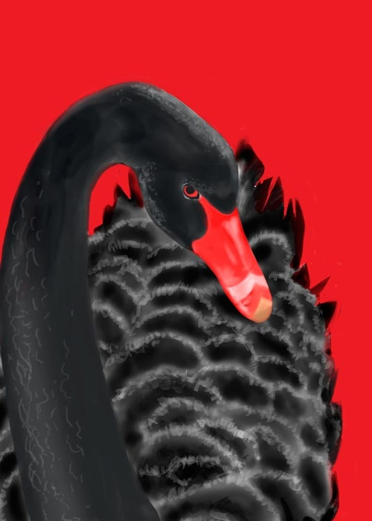 cover-Black-Swan